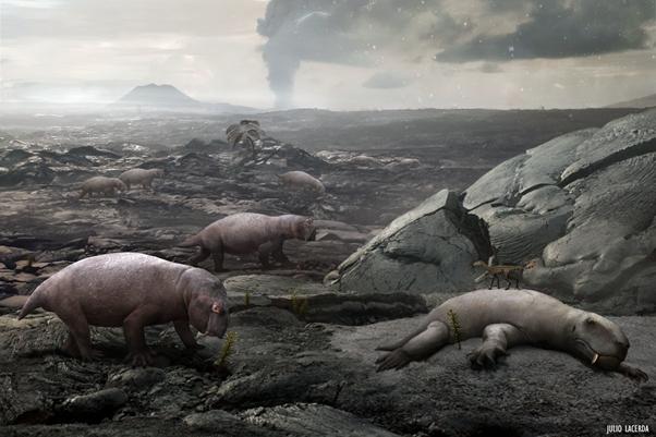 The 3rd mass extinction - Palaeozoic Era